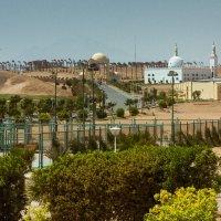Мечеть в пустыне :: Артур Собстыль