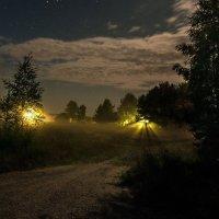 фонари. туман, деревня :: Виталий Исаев