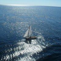 Парус в море... :: BoxerMak Mak