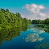 Вид реки Лыкова возле санатория Валуево. :: Виктор