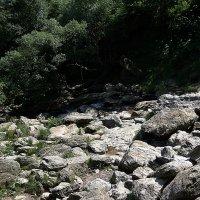 Каменная река. :: juriy luskin