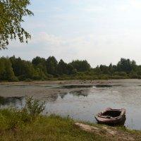 Парник ер (парное озеро) :: Марина Титова