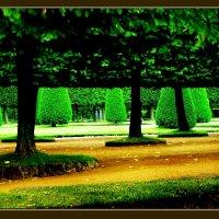 питерские парки :: мирон щудло