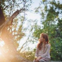 Рыжик - ребенок солнца :: Olga Tarasenko