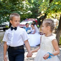 Свадьба в июле :: Elena Vershinina