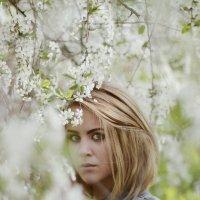 White :: Екатерина Ландерс