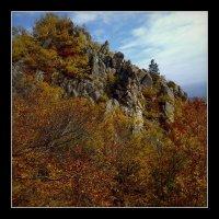 Forever Autumn :: Ник Карелин