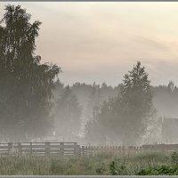 Вечерний туман... :: Александр Смольников