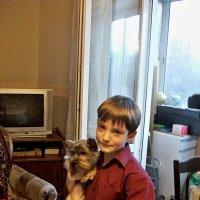 Купите собаку !! :: Milocs Морозова Людмила