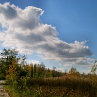 Осень... :: Тамара (st.tamara)