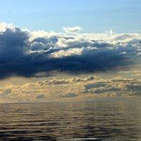 Белое море :: Наталья Трифонова