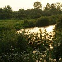 Золотая река :: Евгений Спирин