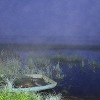 Сиреневый туман..... :: наталья