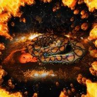 огненная змея :: Денис Шевчук