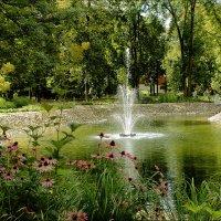 Пруд бернардинского сада. Вильнюс :: Виктор (victor-afinsky)