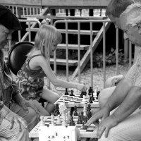 Шах и  мат !!!... (Одна за всех...) картина 1 :: Валерия  Полещикова