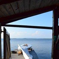 Лето на озере :: Ольга