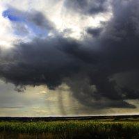 до дождя :: Татьяна Lyon