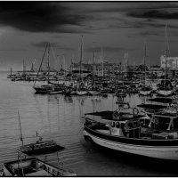 в тихой гавани :: Александр Липецкий