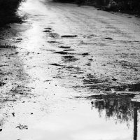 ч/б После дождя :: Алексей Медведев