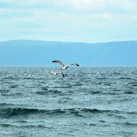 В Байкальских тонах.... :: Оксана Н