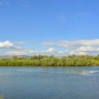 Ветерок на реке :: юрий Амосов
