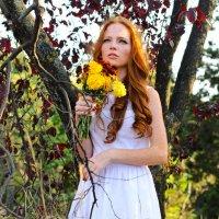 Осень :: Oksana Shaporova