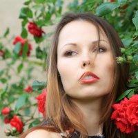 Rose :: Ana Vanesa S