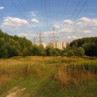 Снова под высоким напряжением IMG_5790 :: Андрей Лукьянов