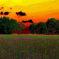 Рассветом познанный закат... :: Лесо-Вед (Баранов)