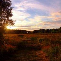 Уж скоро солнышко садится.... :: Nika Dmitrieva