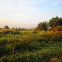 Уходящее лето :: Андрей Снегерёв