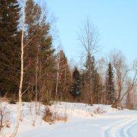 А я дюблю зиму... :: Larissa1425 M