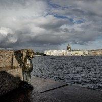 Вид На Английскую набережную. :: Anton Lavrentiev