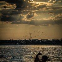 на закате летнего дня :: Наталья Васильева