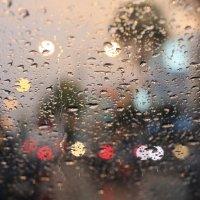 после дождя :: Irina Zubkova