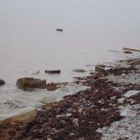 Море,море... :: Анастасия Ляхина