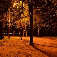 парк :: Роман Романов