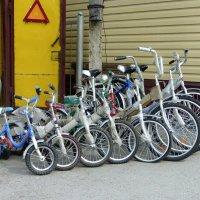 велосипедное :: Лана Lana