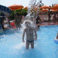 Лето-это маленькая жизнь :: Андрей Божьев