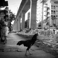 Бангкок :: Мария Майданова