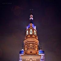 Успенский собор в Омске :: Анна Буякова