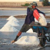 Соляные прииски Таиланда :: Alexandr Safronov