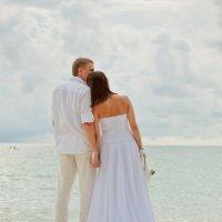 Wedding :: Kseniya Kohansky