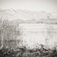 Весенний паводок на Волге :: Robert Sanasaryan