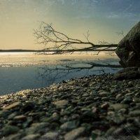 весенняя горизонталь :: Egor Moskalev