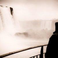 Водопад Игуасу, январь 2012 :: Олег Трифонов