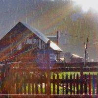 Грибной дождик :: Игорь Нехаев