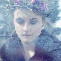 Холодная весна :: Яна Буркот