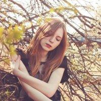 Пробуждение весны :: Яна Буркот